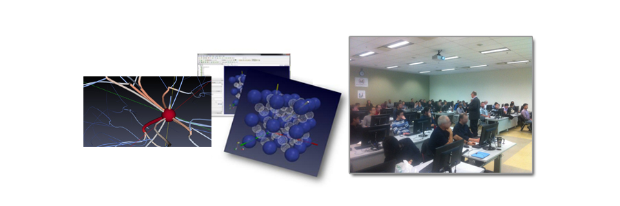 Follow-up on the Scientific Visualization Workshop